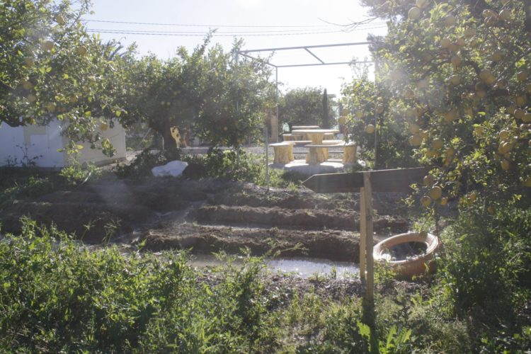 Listo para sembrar - Ecohuerto los Gonzáles